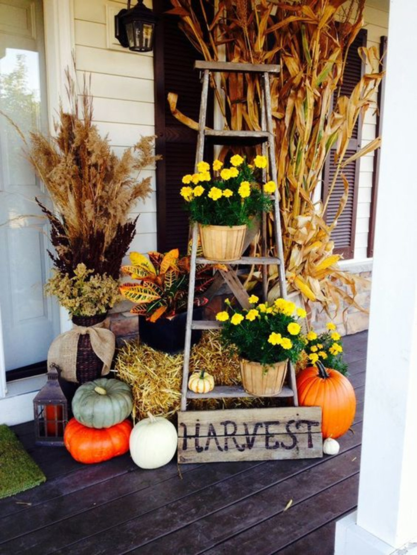 A ladder, some gourds and some flowers are already a great fall combination. Source: Shelterness