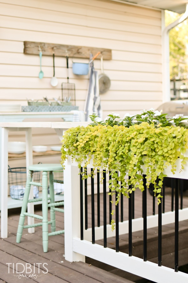 You can use the space to fix some planters. Source: Tidbits
