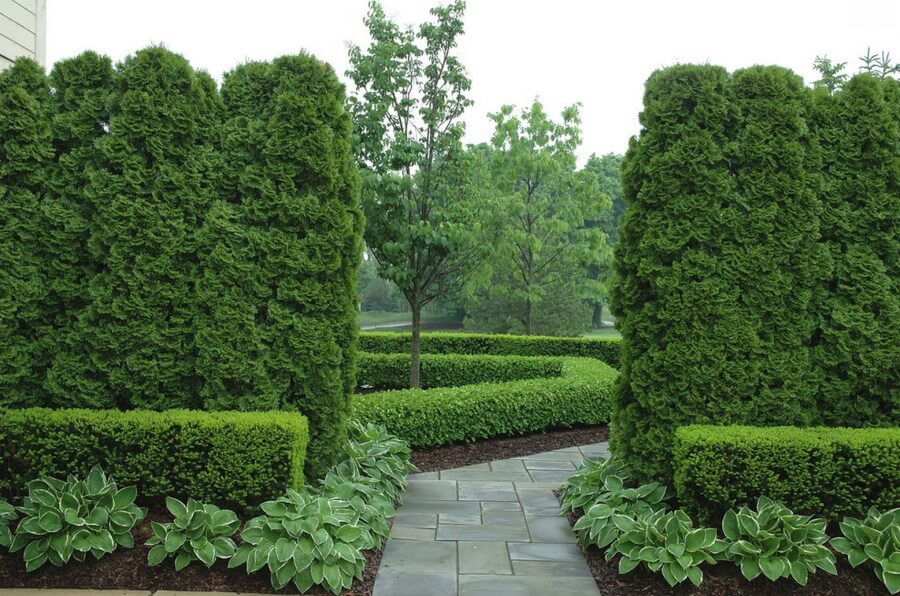 More eco-friendly fencing options