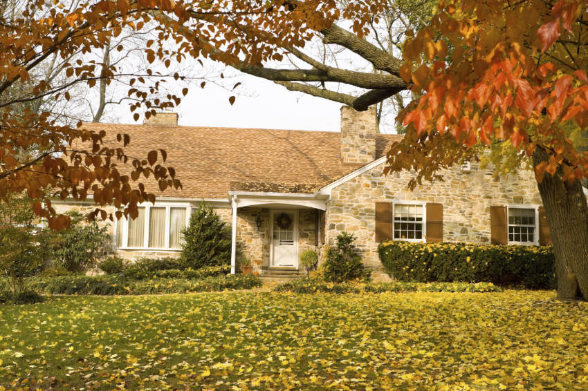 Everything you need to know about interior maintenance for the fall!