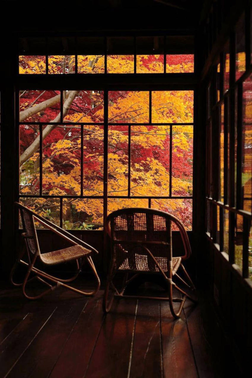What you need to know about interior maintenance for the Fall