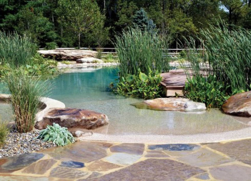 How to build your own natural swimming pool for Create your own pool