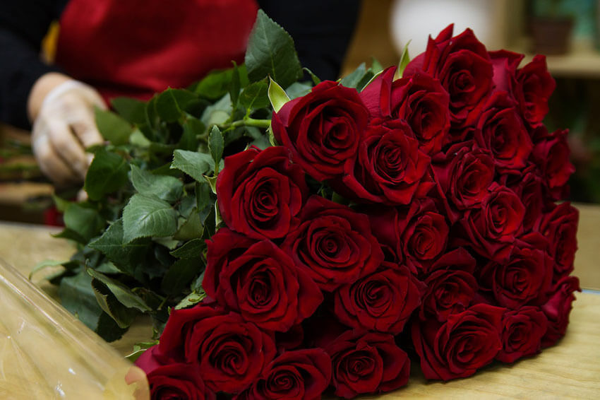 Red roses are the standard for Valentine's Day.