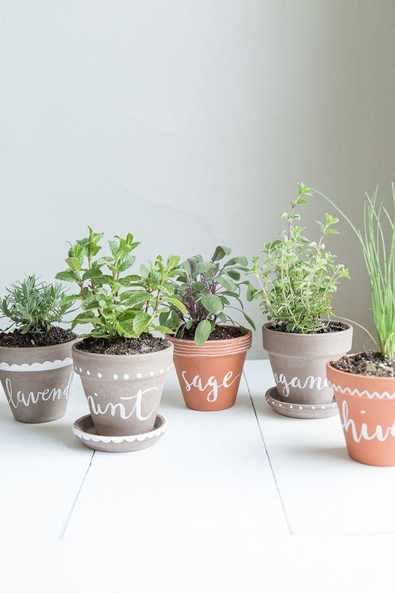 diy-labeled-herb-garden