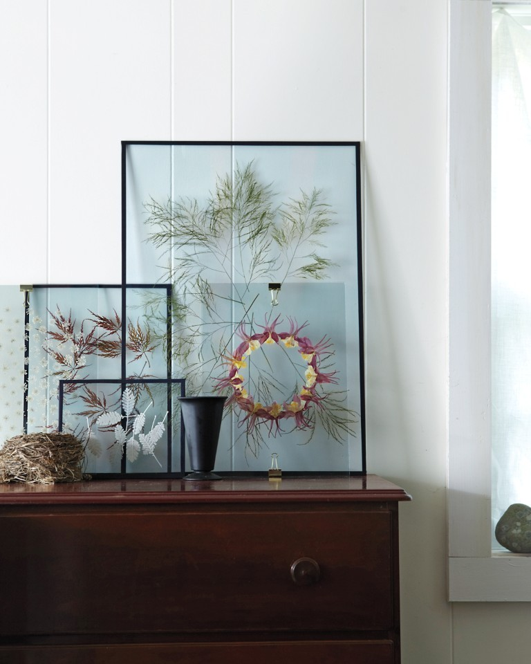 frame leaves, branches, or other natural items