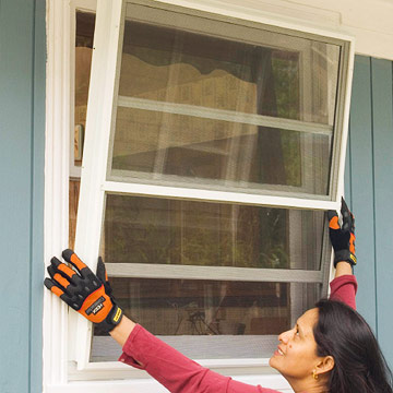 Repair, replace, and protect your windows