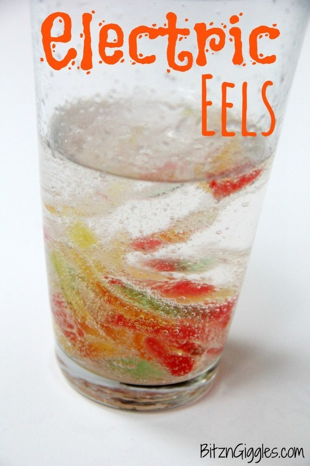 turn gummy worms into electric eels with this cool science experiment for kids