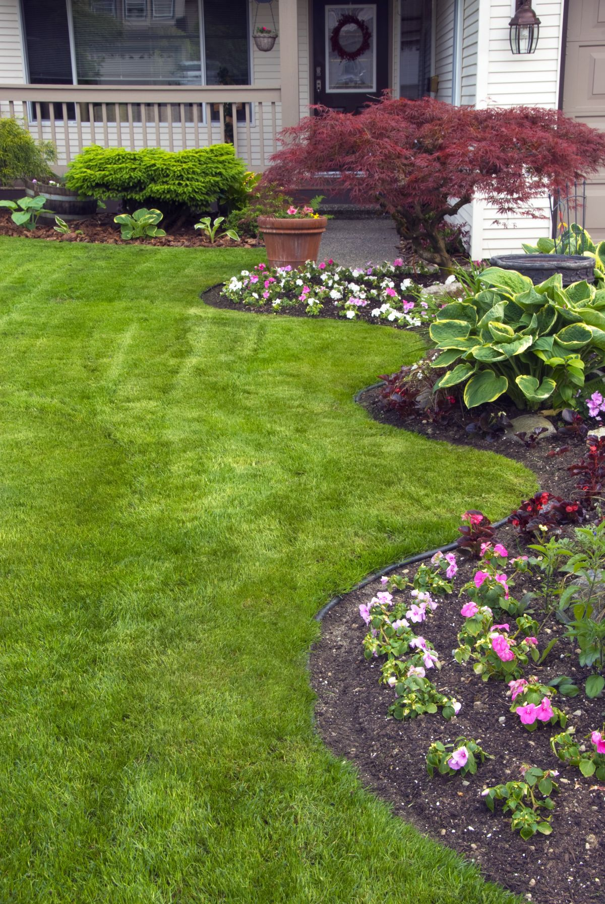 There are a few ways you can get a healthy, beautiful lawn to enjoy this summer.
