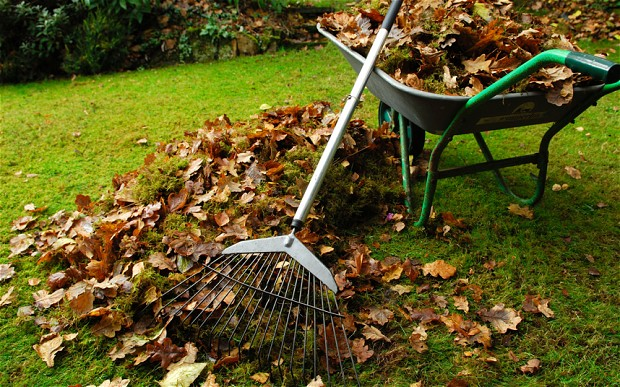 Cleaning up your surroundings can get you 30% more cash for your house, according to experts. Image Source: Ed Hauling