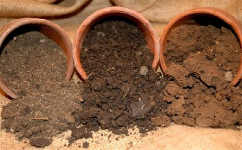From left to right, sandy, loamy and clay soils.