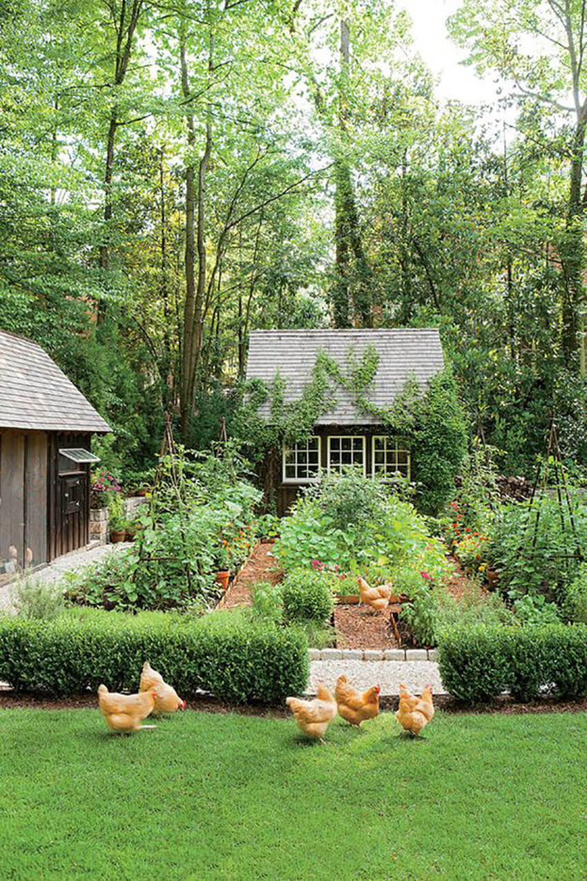 If you take good care of the soil, the garden of your dreams is closer than you think.