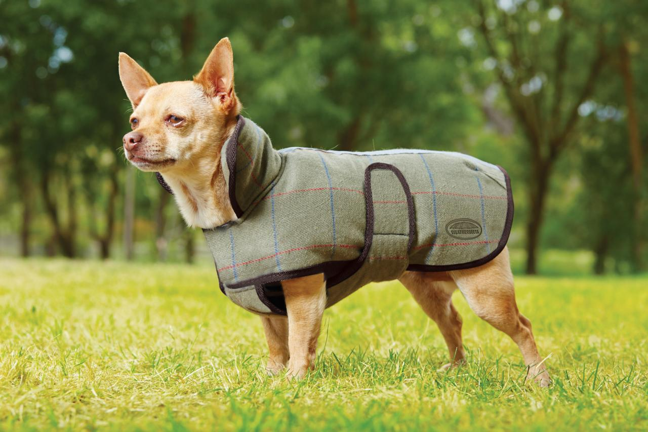 winter-pet-safety-coat