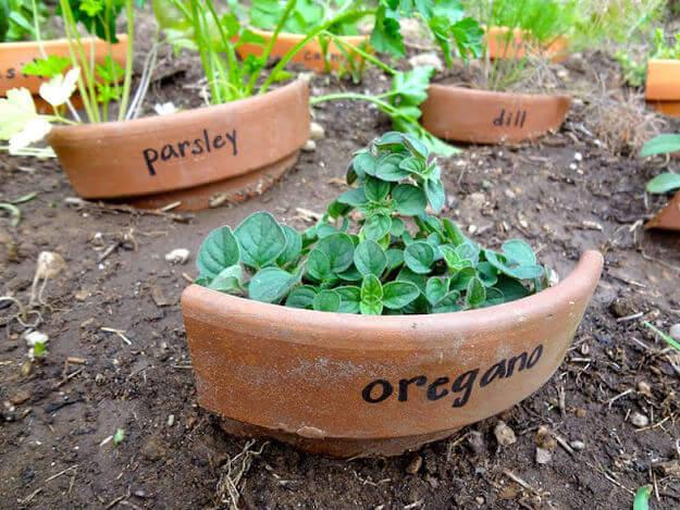 Here's a novel idea. Using a broken potter as a planter